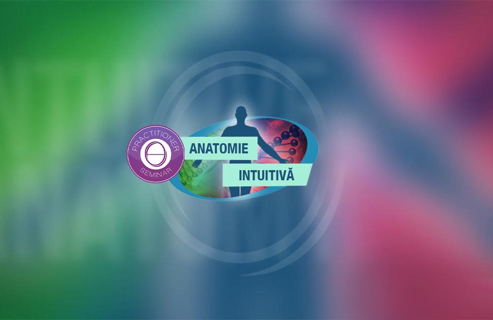 Cursul Anatomie Intuitivă Theta Healing cu Andrea Filip